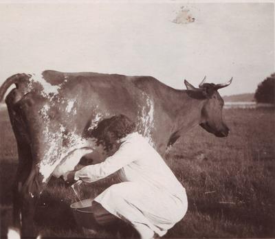 Kvinna som mjölkar en ko